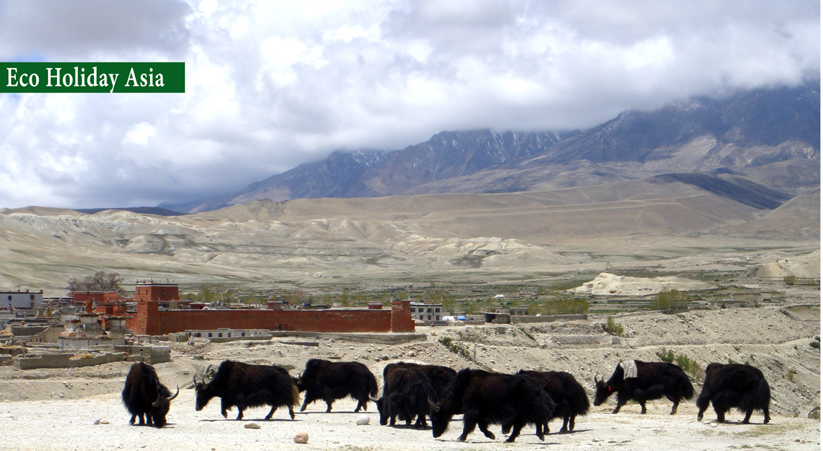 "View of Lo Manthang ""Wall Kingdom"""