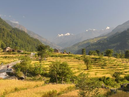 Tsum Valley Manaslu Trek with Eco Holidays Asia